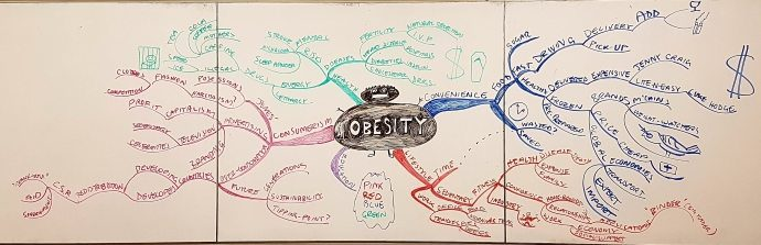 Obesity Mega Buzan Mind Map by MBA students, in a class on Creativity and Innovation